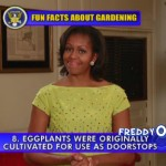 michelle-obama-tells-her-top-ten-fun-facts-about-gardening-on-late-show4