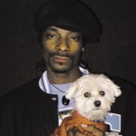 VIDEO : Snoop Dogg Creates Brand Of Dog Food Products