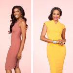 Rumor Alert: Cynthia Bailey and Porsha D. Williams Fired From Atlanta Housewives?