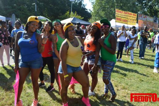 pure-heat-community-festival-2016-freddyo-31